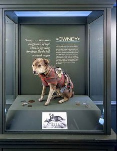 273350-pb-110727-owney-rs_2_blocks_desktop_small